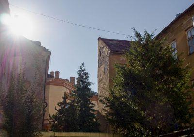 dt2020-feigler-ignacz-ml.-dvor-v-dome-foto-janka-kollarova